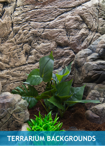 TERRARIUM-BACKGROUNDS
